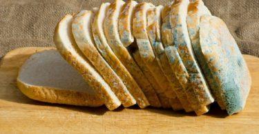 Küflenmiş Ekmek Yemek Tehlikeli mi?