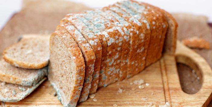 Küflü ekmek sağlığa zararlıdır.