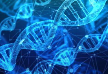 Adli Araştırmalarda Genetik Veri Tabanı Kullanımı