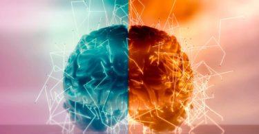 Beyninin Yarısı Alınan İnsanlarda Beyin Bağlantıları Daha Güçlü