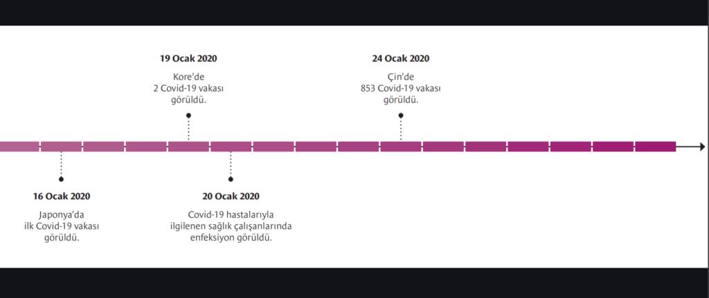 Covid-19 salgının ilk günden yaşanan olayları kronolojik sırası ile belirtiliyor.