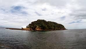 Keçi Adası Yeni Zelanda