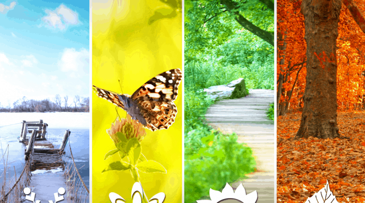 Dünyada 4 mevsim yaşanmaktadır. İlkbahar, yaz, sonbahar ve kıştır.